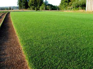 Купить газонный грунт по акции в Домодедово