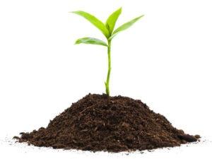 Купить садовую землю по низкой цене с доставкой
