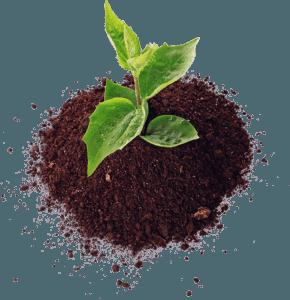 Купить плодородный грунт по низким ценам по акции